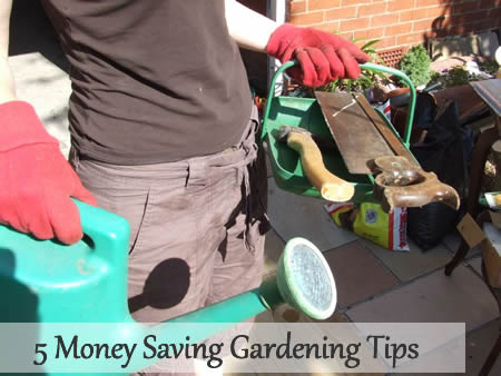 5 Money Saving Gardening Tips