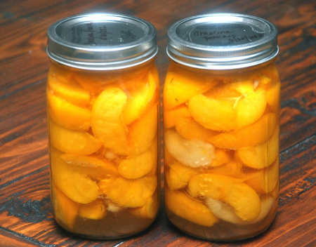 Honey Packed Peaches Recipe