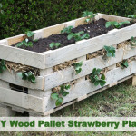 DIY Wood Pallet Strawberry Planter