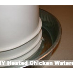 DIY Homemade Heated Chicken Waterer