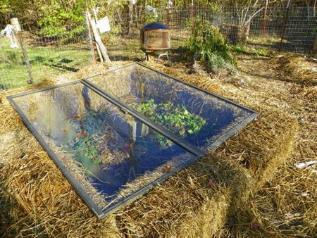DIY Straw Bale Cold Frame