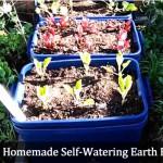 DIY Homemade Self Watering Earthbox