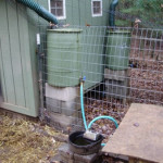 DIY Automatic Rainwater Chicken Waterer