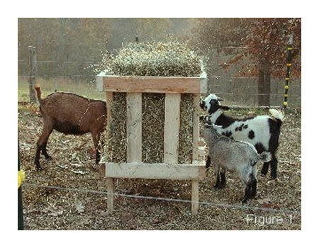 DIY Square Bale Goat Hay Feeder