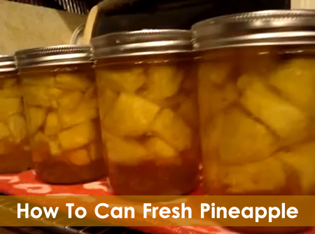 Canning Fresh Pineapple