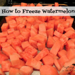 Freezing Watermelon