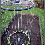 DIY Bicycle Tire Trellis