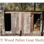 DIY Wood Pallet Goat Pen