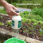 DIY Thumb Watering Can