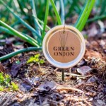 DIY Mason Jar Lid Plant Labels