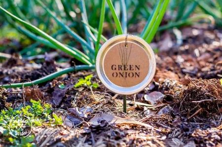 DIY Mason Jar Lid Plant Labels