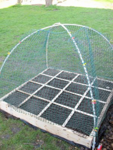 Pvc Hoops For Raised Beds