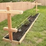 DIY Raspberry Trellis Plans