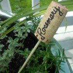 DIY Wine Cork Plant Markers