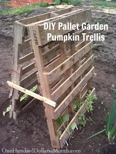 Diy Wood Pallet Pumpkin Trellis