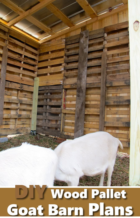 DIY Wood Pallet Goat Barn Plans