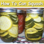 How To Can Squash