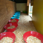 DIY Plastic Bowl Nesting Boxes
