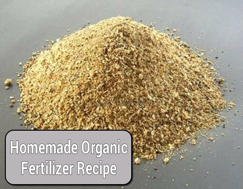 How To Make Your Own Organic Fertilizer