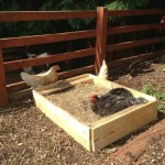 Homemade Wood Pallet Chicken Dust Bath