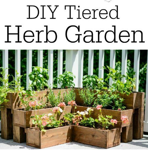 DIY Tiered Herb Garden Plans