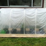 DIY Mini Polytunnel Greenhouse