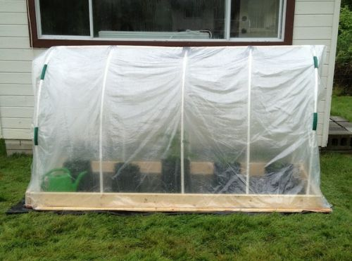 DIY Mini Polytunnel Greenhouse
