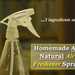 Homemade All Natural Air Freshener Spray