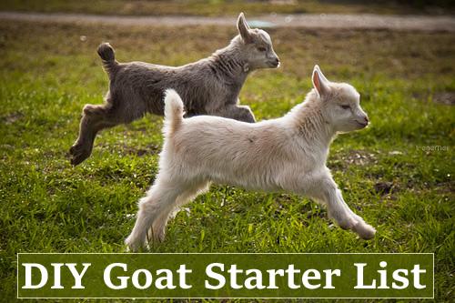 DIY Goat Starter List