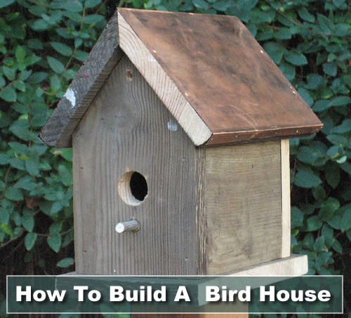 How To Build A Bird House Plans