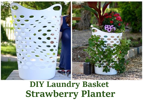 DIY Laundry Basket Strawberry Planter