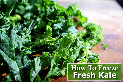 How To Freeze Fresh Kale