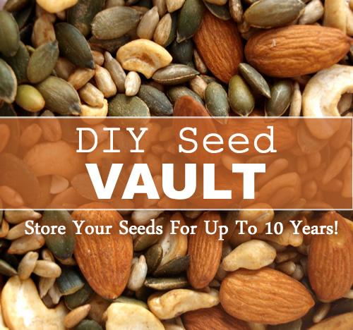 DIY Seed Vault