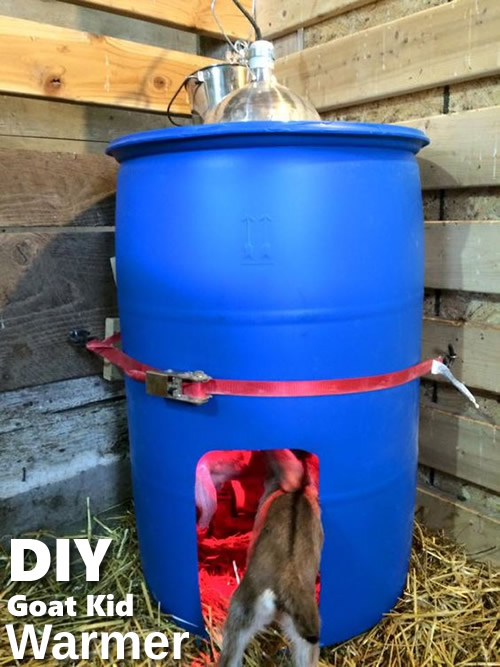 DIY Goat Kid Warmer
