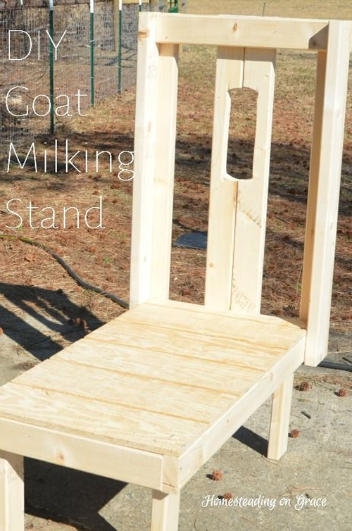 DIY Goat Milking Stand Plans