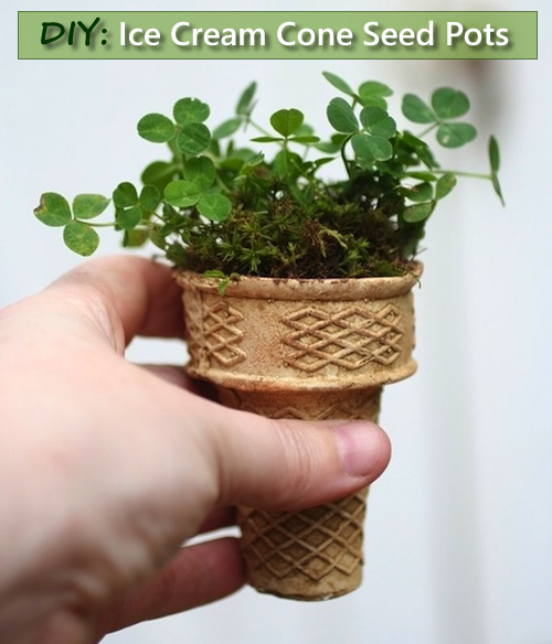 DIY Ice Cream Cone Seed Starters