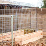 DIY Trellis Raised Garden Box