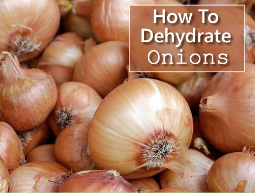 How To Dehydrate Onions