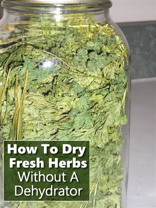 How To Dry Herbs Without Using A Dehydrator