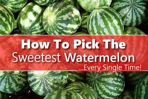 How To Pick The Sweetest Watermelon