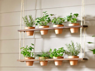 DIY Hanging Herb Garden Planter