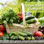 Vegetable Garden Sunlight Chart