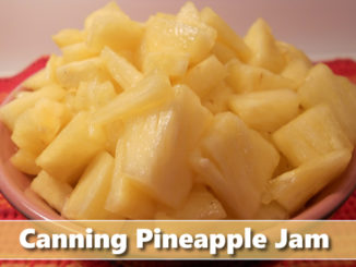 Canning Homemade Pineapple Jam