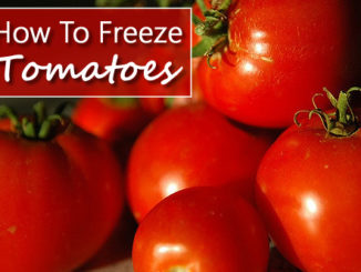 How To Freeze Your Tomatoes
