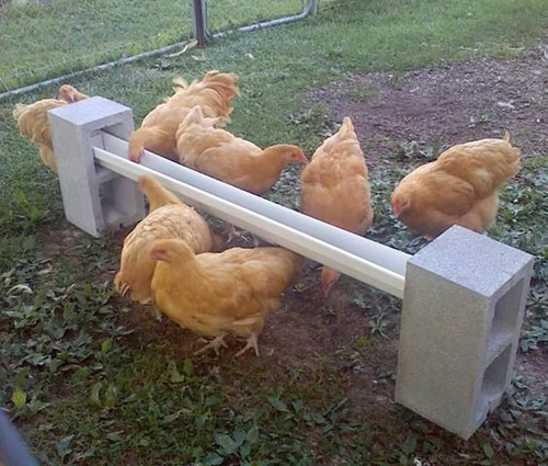 DIY Cinder Block Chicken Feeder