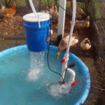 DIY Duck Pond Filter & Shower
