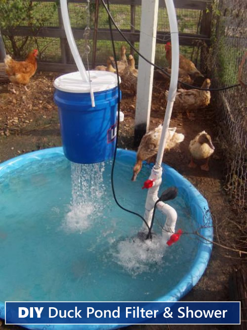 Diy duck pond filter shower for Pond filter system diy