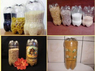 DIY Plastic Bottle Food Canisters
