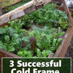 Cold Frame Gardening Tips