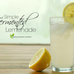 Simple Fermented Lemonade Recipe